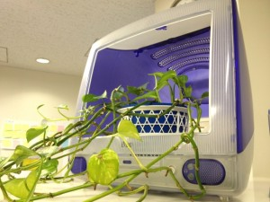 iMacプランター2